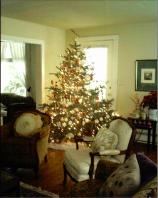 christmas-lights004