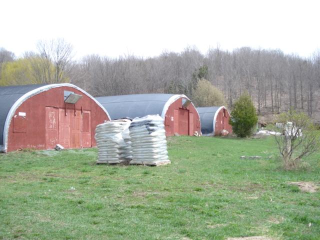 Putney's green houses