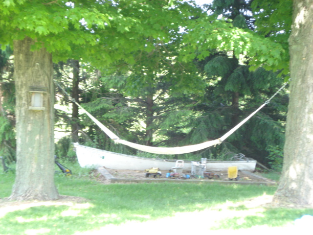 Our annual purchase - a new hammock. All the kids and most adults love to lay or play in that thing