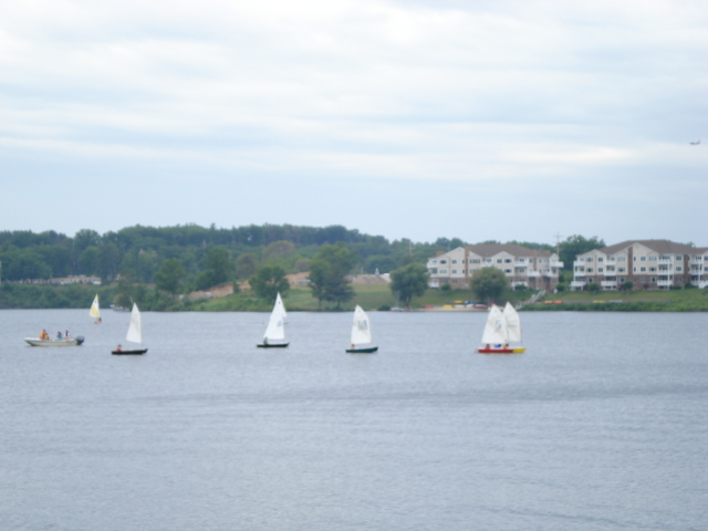Look at these cute little sailboats.