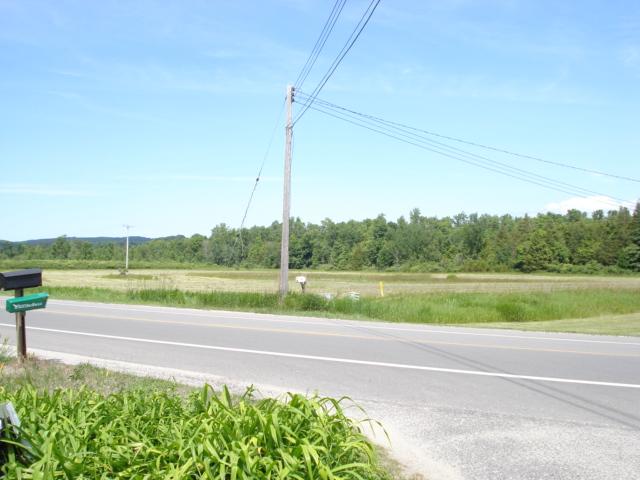 a look at Sis' half mowed meadow across the street