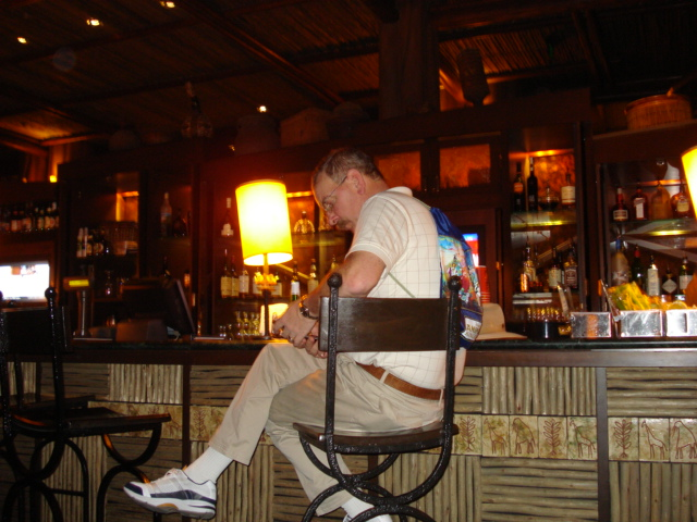 Drink some cocktails at the Animal Kingdom Lodge