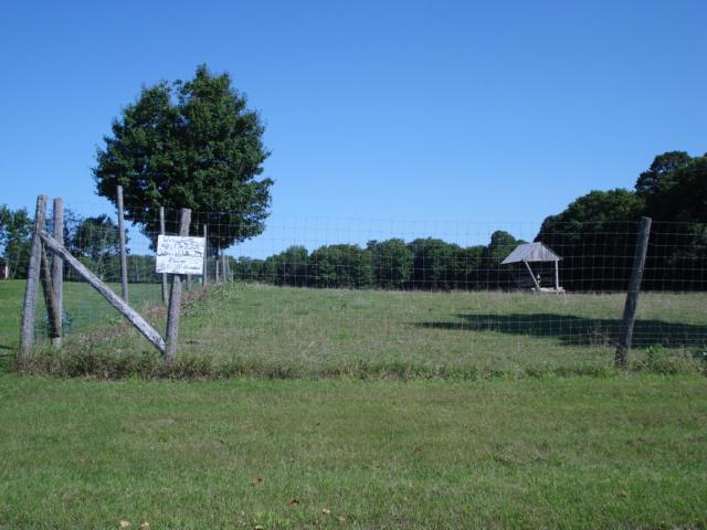 Elk ranch