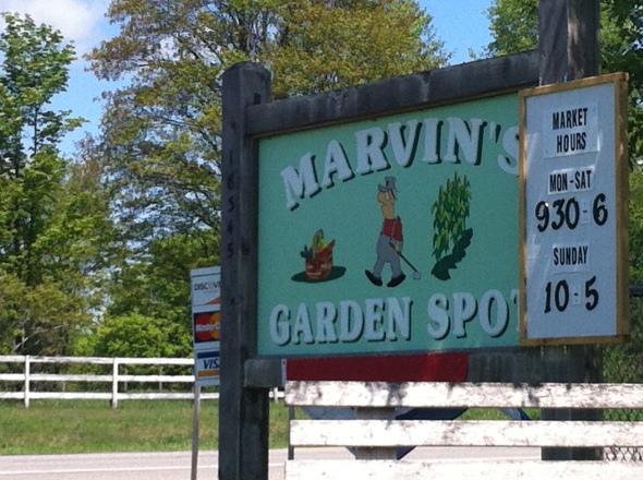 Marvin's Garden Spot