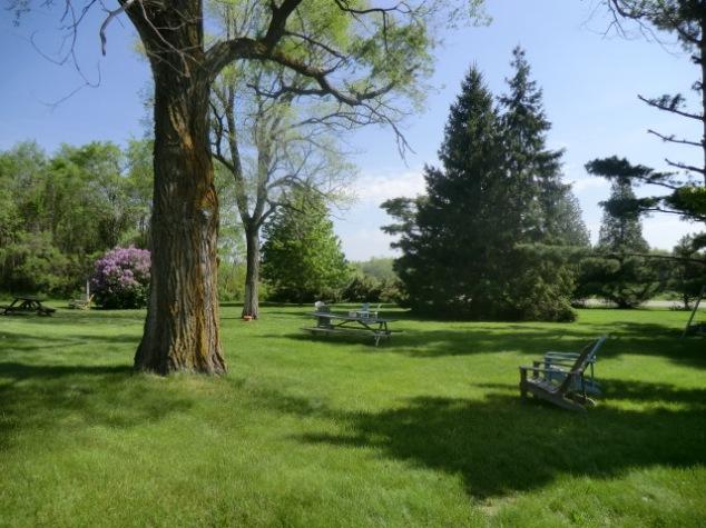Wayfarer front lawn