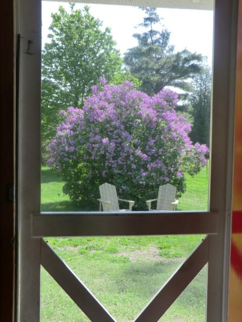 cottage 6 -  The Hummingbird